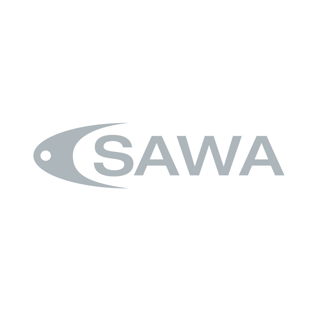 CSAWA Corporate Design Logo