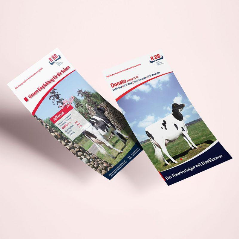 RBB Rinderproduktion Flyer