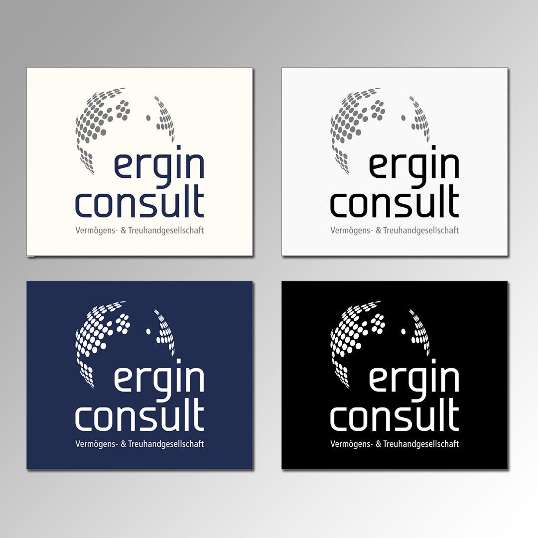 ergin consult Erstellung eines Corporate Design und Logovarianten